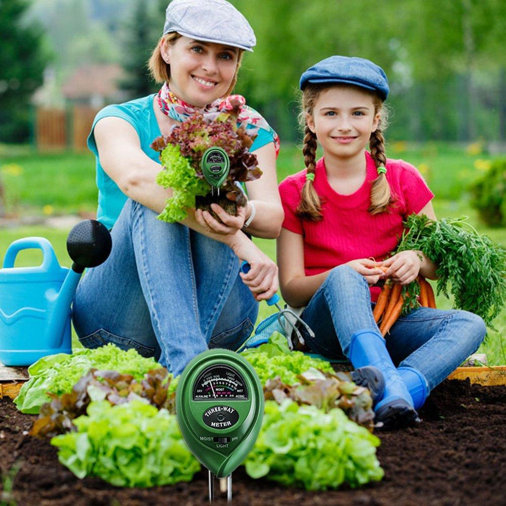 Circular Dsaren 3 in 1 Soil Moisture Meter Garden Soil Tester Kit Moisture Indoor and Outdoor Light and PH Acidity/Plants/Tester for Farm Lawn No Battery Needed