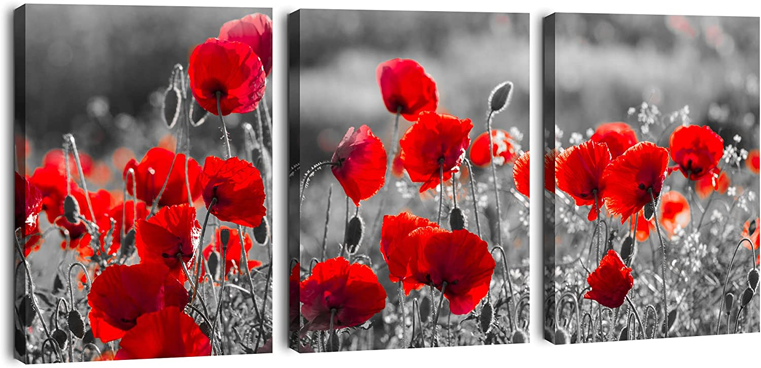 Red Flowers Art Pictures For Living Room Bathroom Wall Decor Poppies Canvas Wall Art For Bedroom 3 Panel Artwork Prints Decoration Gallery Wrapped