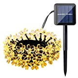 Amazon Price History for:Qedertek Solar String Lights, Cherry Blossom 22ft 50 LED Waterproof Outdoor Decoration Lighting for Indoor/Outdoor, Patio, Lawn, Garden, Christmas, and Holiday Festivals ( Warm white)