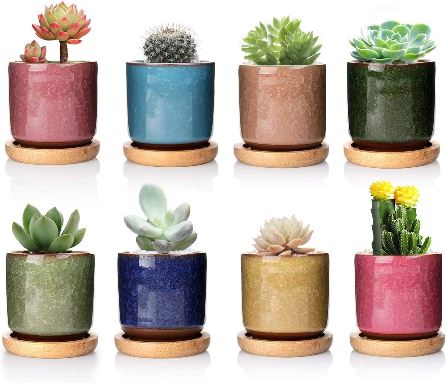 DeeCoo 8 Pack 2.5 inch Ceramic Ice Crack Succulent Plant Pot with Bamboo Tray,Mini Pots for Plants, Cactus Plant Pot Flower Pot Container Planter for Home Garden Office Decoration(Plants NOT Included)