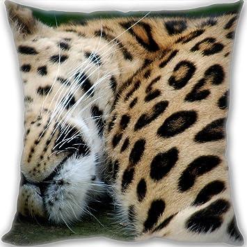 l.z.y barato leopardo Predator Big Cat manta almohada ...