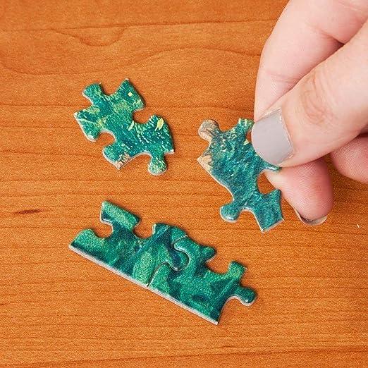 QNJY Rompecabezas de Madera para Adultos de 1000 Piezas 3D Tienda ...