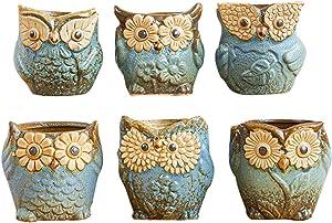 VELIHOME Mini Flower Pots Ceramic Owl Flower Pots Small Plant Pots Desktop Ornament for Succulents Home Garden Decoration (6 pcs/Set)