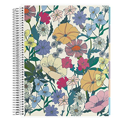 Amazon.com : Erin Condren 12-Month 2019-2020 Deluxe Monthly ...