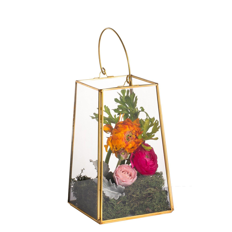 NCYP Hanging Glass Candle Holder Decorative Wall Brass Geometric Terrarium Copper Echelon Lantern Rack Centerpiece Handle Gold (No Plants