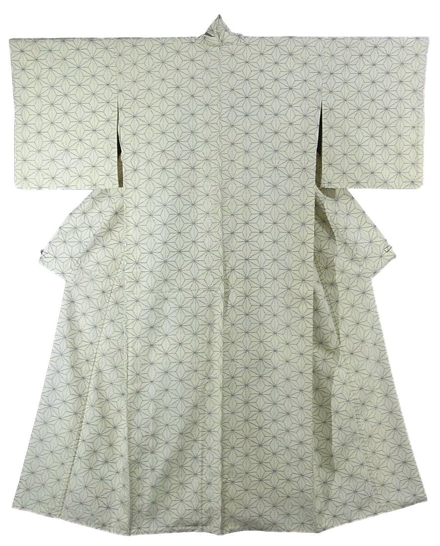 リサイクル 着物  紬 正絹 袷 麻の葉模様 裄65cm 身丈162cm B07DQFD4TV  -