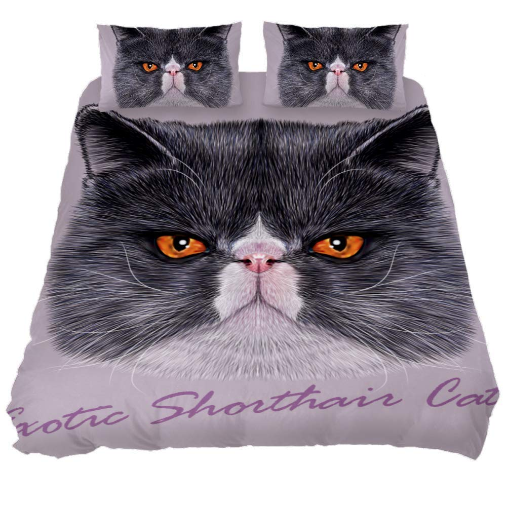 jessgirl Cute Exotic Shorthair Cat 3D Printed Elegant Modern California King Size Bedroom 3 Piece Bedding Sets