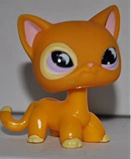 Shorthair #842 LPS Collectible Replacement Single Figure OOP Out of Package /& Print Retired Hasbro Orange, Green Eyes, White Belly - Littlest Pet Shop Collector Toy Loose