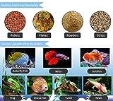 Digital Automatic Fish Feeder PROCHE Aquarium