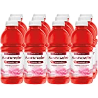 12-Count SoBe Vitamin Enhanced 0 Calories Yumberry Pomegranate Water