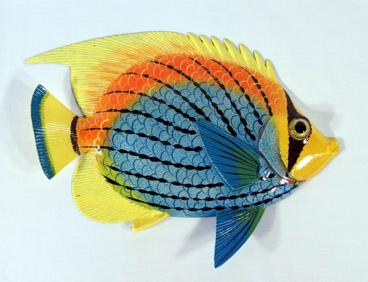 Amazon handpainted tropical fish replica wall mount decor amazon handpainted tropical fish replica wall mount decor plaque blue yellow top 8 home kitchen amipublicfo Image collections