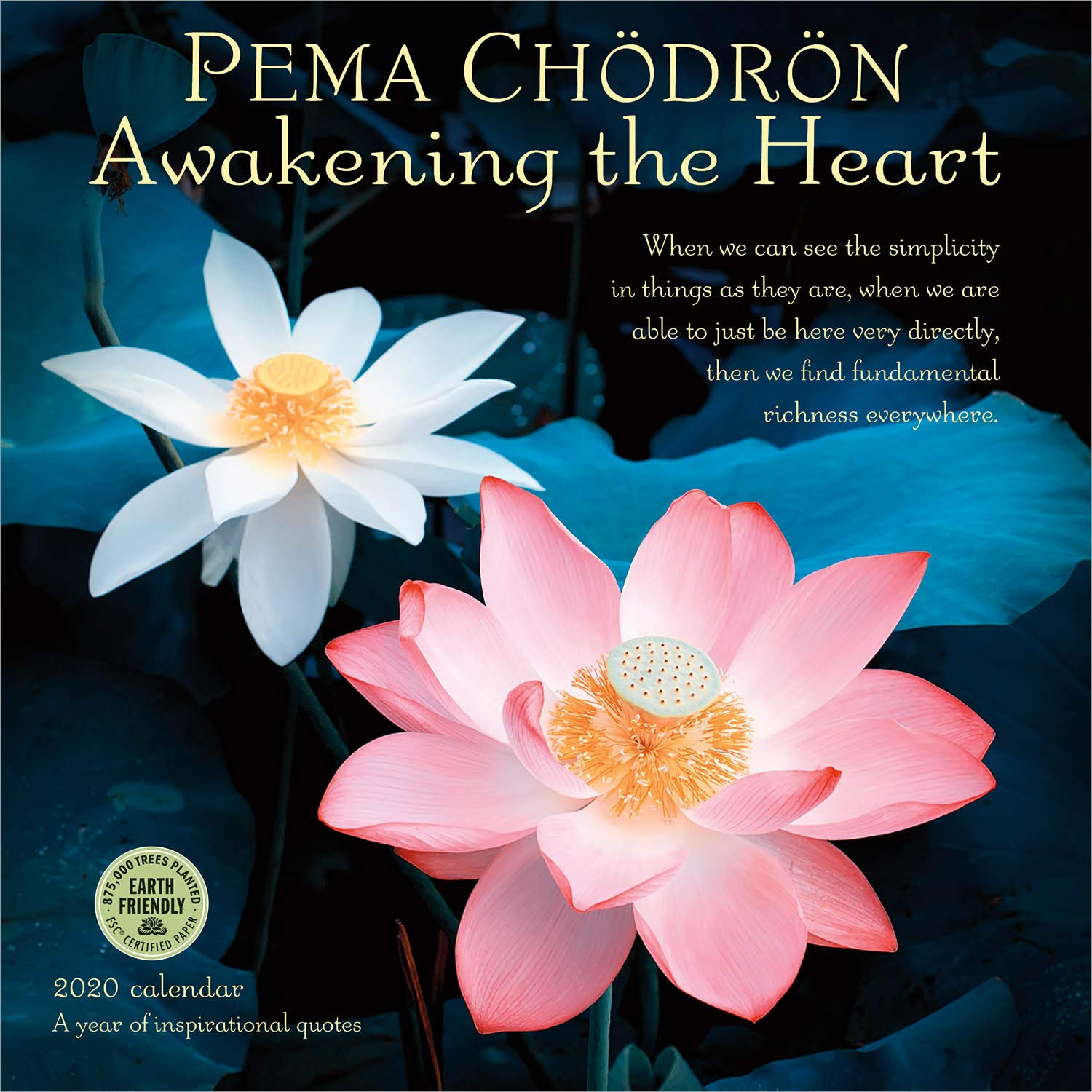 Pema Chodron 2020 Wall Calendar: Awakening the Heart - A Year of Inspirational Quotes by Amber Lotus Publishing