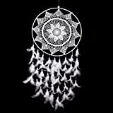 Amazon Price History for:Whitelotous 36.6'' Big Size White Handmade Dream Catcher with Feathers Hanging Decor