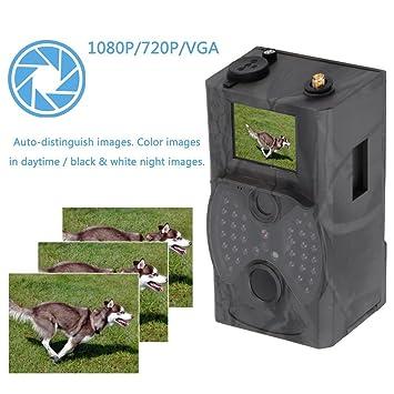 HC300 M 12 MP Full HD 1080p cámara de caza de Wild Cámara, MMS GPRS infrarrojos de parte trasera cámara cámara PIR Sensor de movimiento, visión nocturna ...