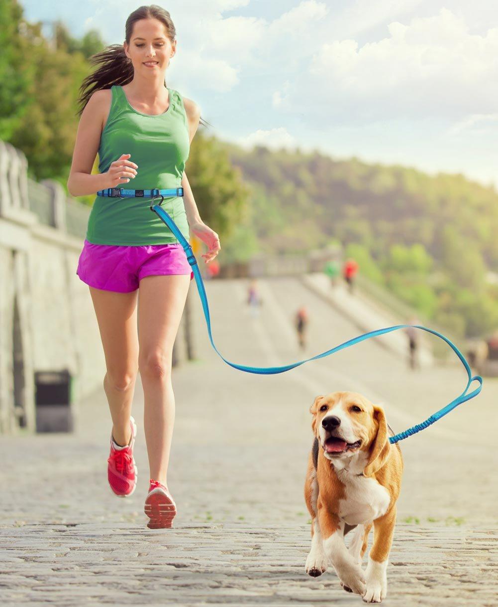 PETBABA Laisse Chien Mains Libres, 86cm Longue Réglable Réfléchissant Élastique Jogging Courir Laisse de Dressage pour Chien en Noir