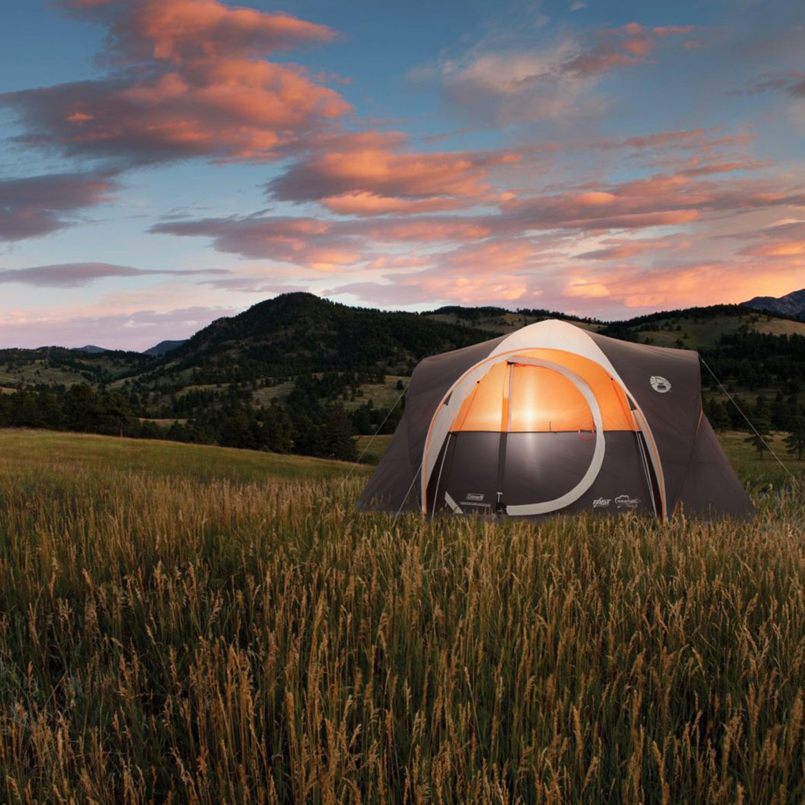 Coleman Yarborough 6 Person Fast Pitch Tent by BFF   B00TFYG4S4