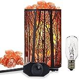 Salt Lamps, Natural Himalayan Salt Lamp, Forest Salt Lamp, Salt Night Lights, Salt Crystal Light with Retro Metal Basket Lamp