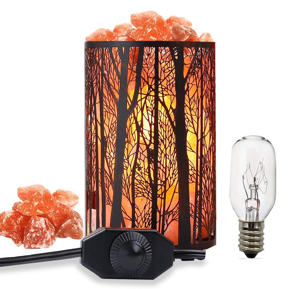 Salt Lamps, Natural Himalayan Salt Lamp, Forest Salt Lamp, Salt Night Lights, Salt Crystal Light with Retro Metal Basket Lamp and Extra 25W Lamp Bulbs by Shineled (Image #1)