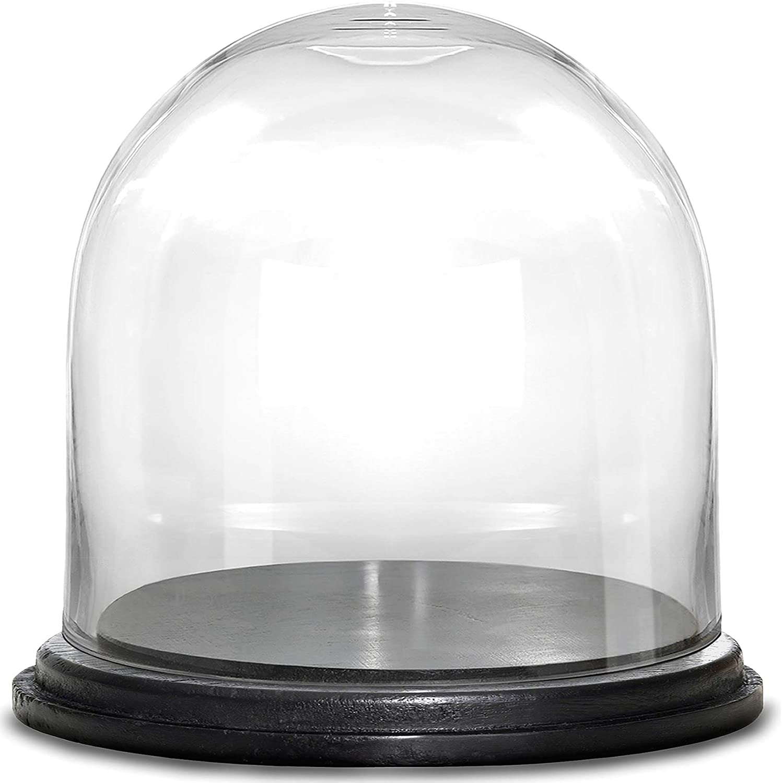 Spherical Terrarium Jar Dust Cover Flower Storage box Glass cloche Wooden base