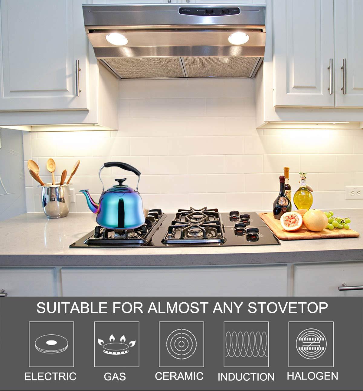 Amazon.com: OMGard - Tetera silbante para cocina, cocina ...
