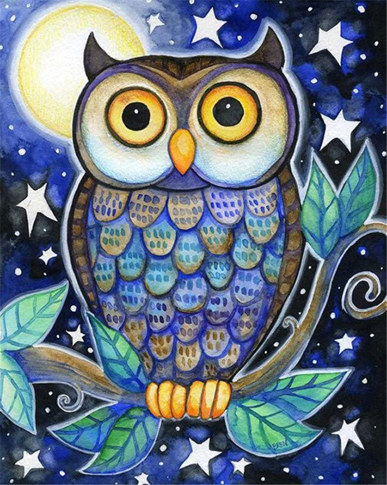 Frame Cute Owl Drawing with Brushes Christmas Decor Decorations Gifts DIY Oil Painting Paint by Number Kit for Kids Adults Beginner 16x20 inch