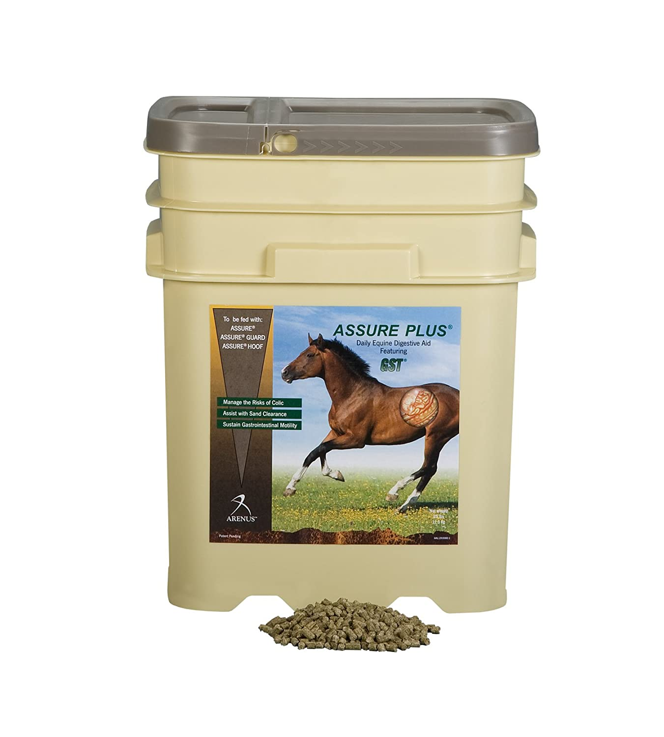 Amazon.com : Assure Plus Equine Sand Clearance Supplement : Horse  Nutritional Supplements And Remedies : Sports & Outdoors