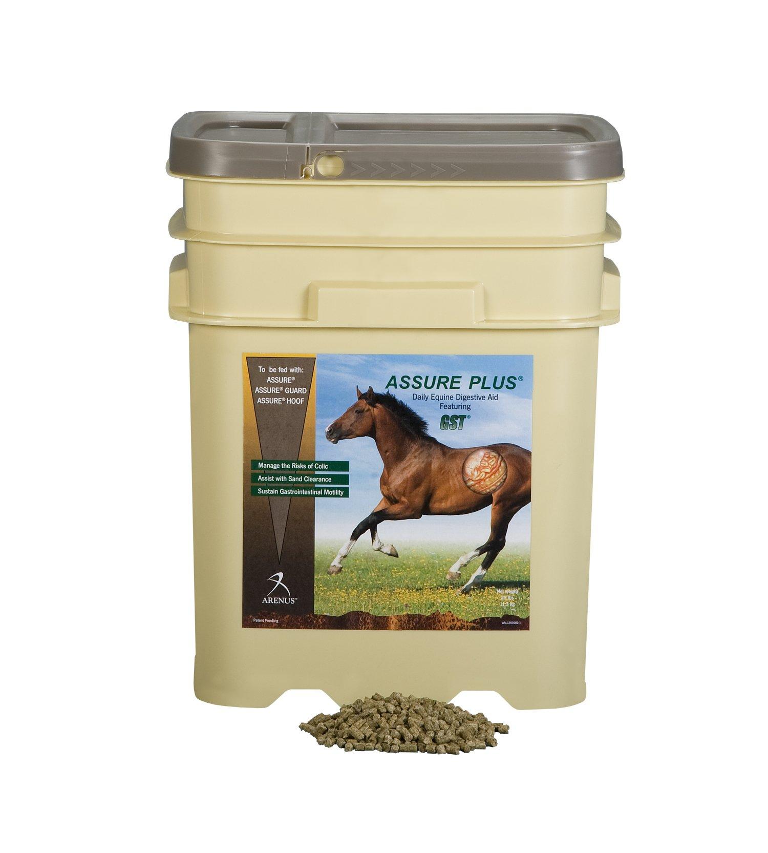 Assure Plus Equine Sand Clearance Supplement (15-Pound)