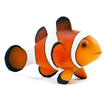 Science4you – Figurine Clown Fish, Plastic, Size M (729.0): Toys & Games [5Bkhe1005425]