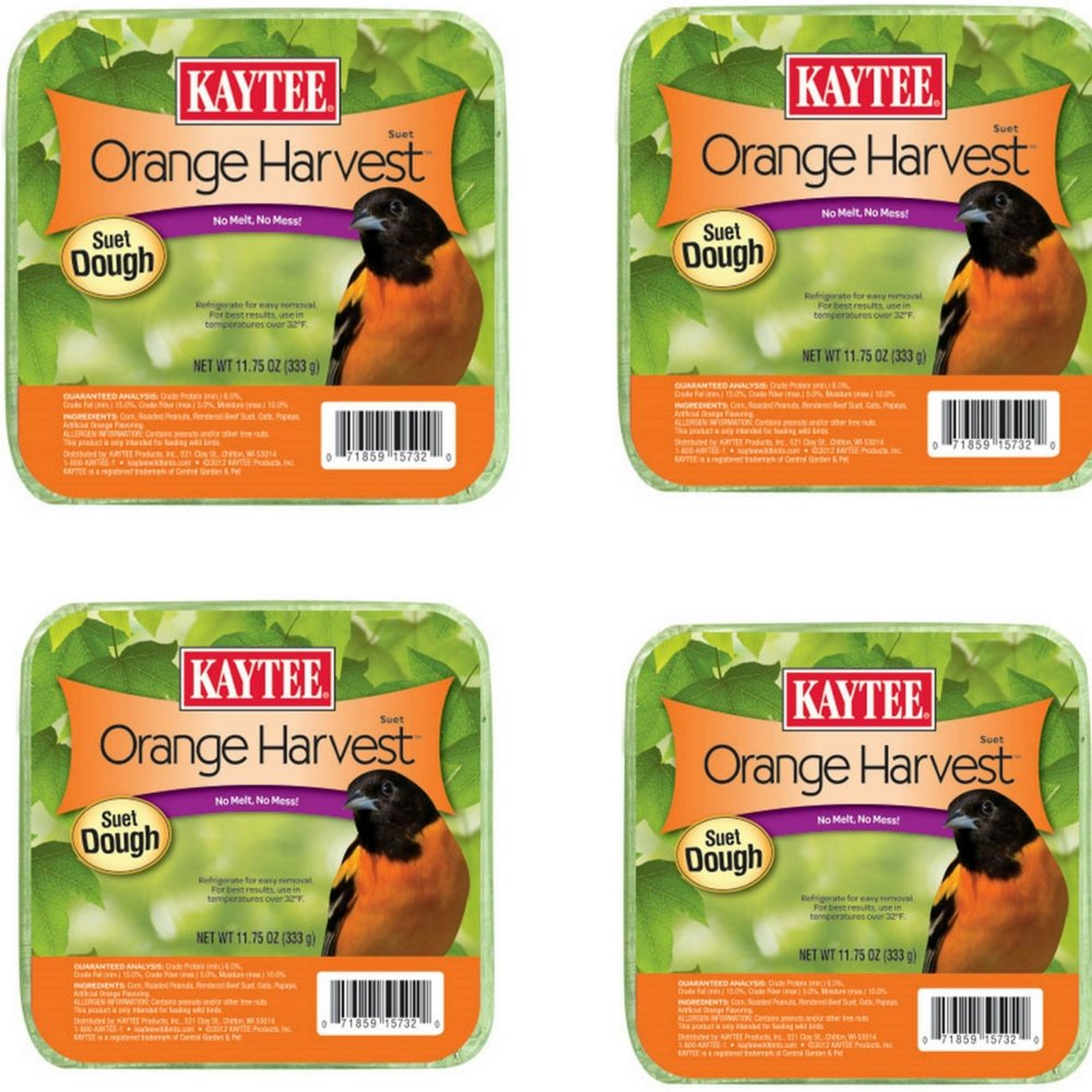 Kaytee Orange Harvest High Energy Suet 11.75oz (4)