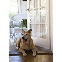 Cardinal Gates The Door Shield - Pet Scratch Protector
