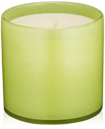 Amazon.com: LAFCO New York House & Home Candle, Office Rosemary ...