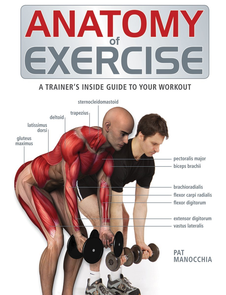 Anatomy of Exercise: A Trainer's Inside Guide to Your Workout: Pat  Manocchia: 8601400631744: Amazon.com: Books