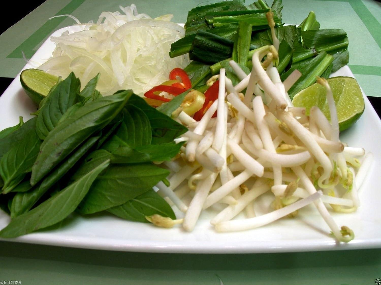 shadon Beni Ngo Gai AK A; Vietnamienne Coriandre 100 graines Graines persil Thai culantro RECAO