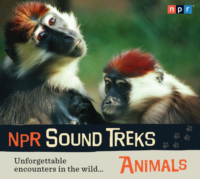 NPR Sound Treks: Animals: Unforgettable Encounters in the Wild