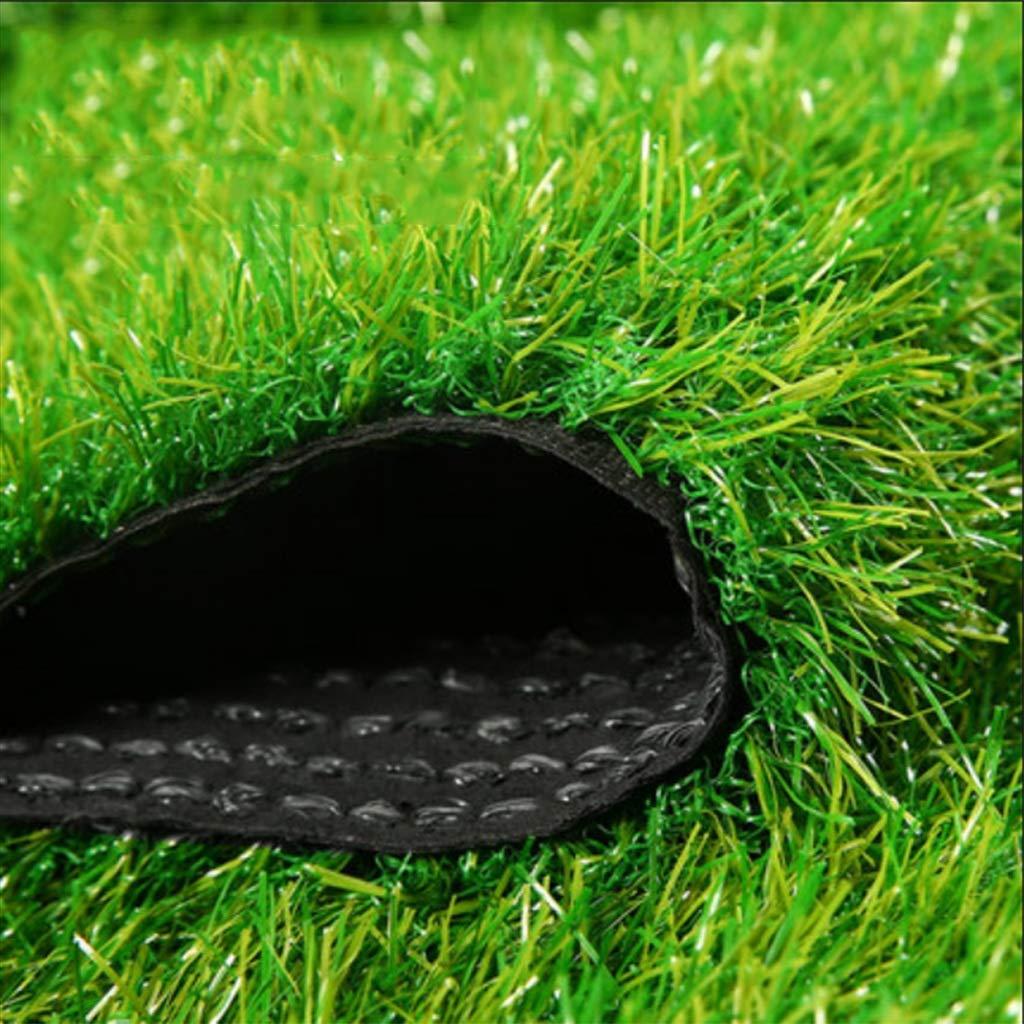 YNFNGXU 人工芝芝生30ミリメートルパイル高密度ホリデー芝生庭ペットマット犬芝生用庭ペット屋外装飾(1M * 2M) (色 : Spring grass, サイズ さいず : 2x10m) B07S3YTRVH Spring grass 2x10m