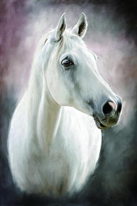 AS Pintura Pintura De Arte Moderno Caballo Blanco Cuadro En Lienzo ...