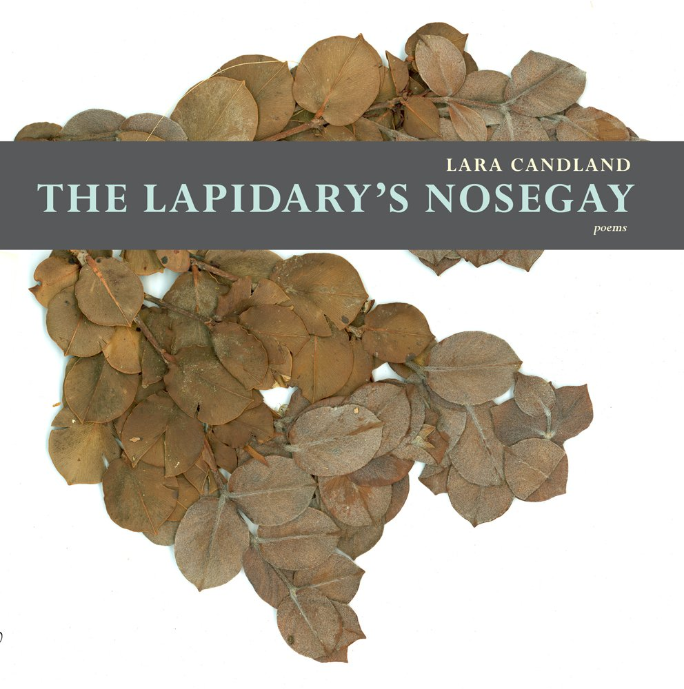 Download The Lapidary's Nosegay (Mountain West Poetry Series) pdf
