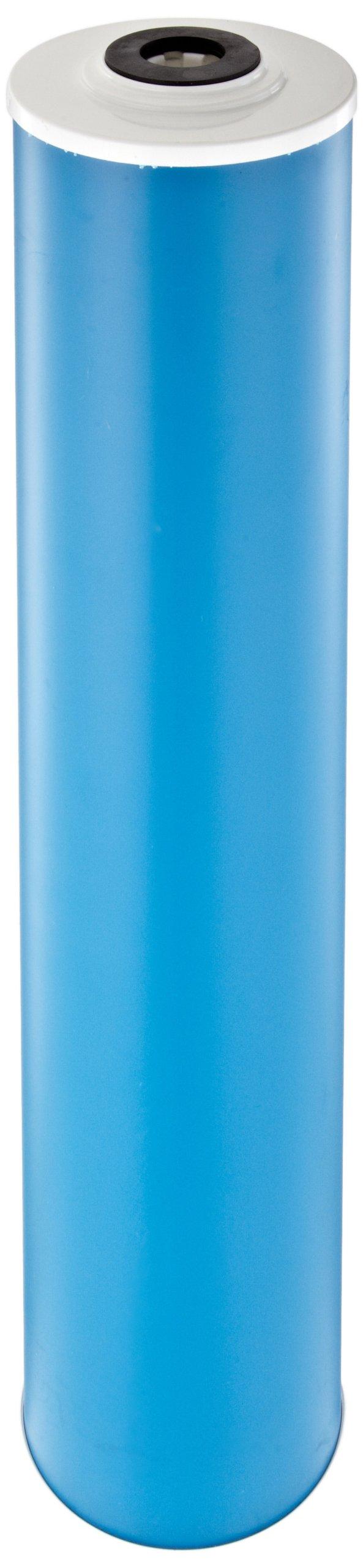 Pentek GAC-20BB Carbon Filter Cartridge, 20'' x 4-1/2''