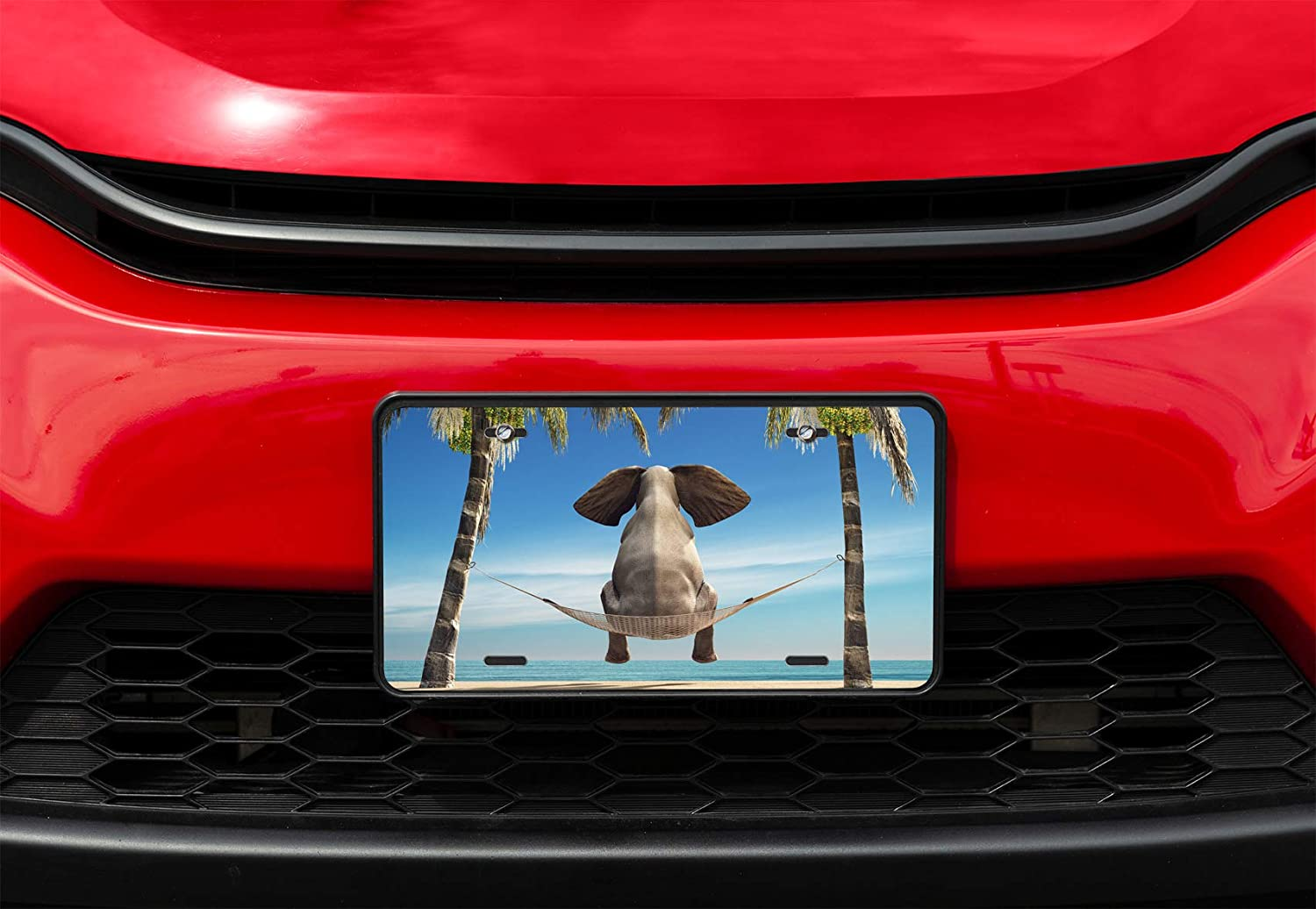 Amcove License Plate Cute Panda Decorative Car Front License Plate,Vanity Tag,Metal Car Plate,Aluminum Novelty License Plate,6 X 12 Inch 4 Holes