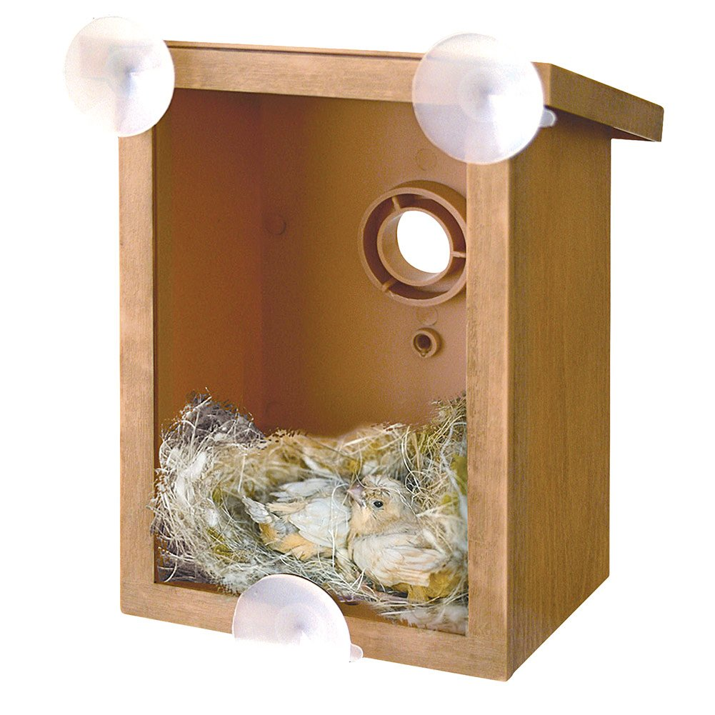My Spy Birdhouses Hampton Direct