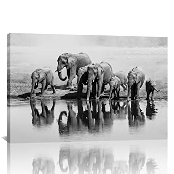 Animals canvas wall art black and white elephant photo painting printed on canvas elephant wall decor