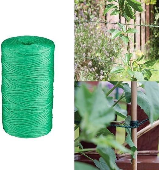 Prime Qualität - Cuerda de yute verde para jardín, 250 metros, bola de cuerda de amarre para plantas, jardines, exteriores, patio, hogar, atado, entrenamiento, plantas: Amazon.es: Jardín