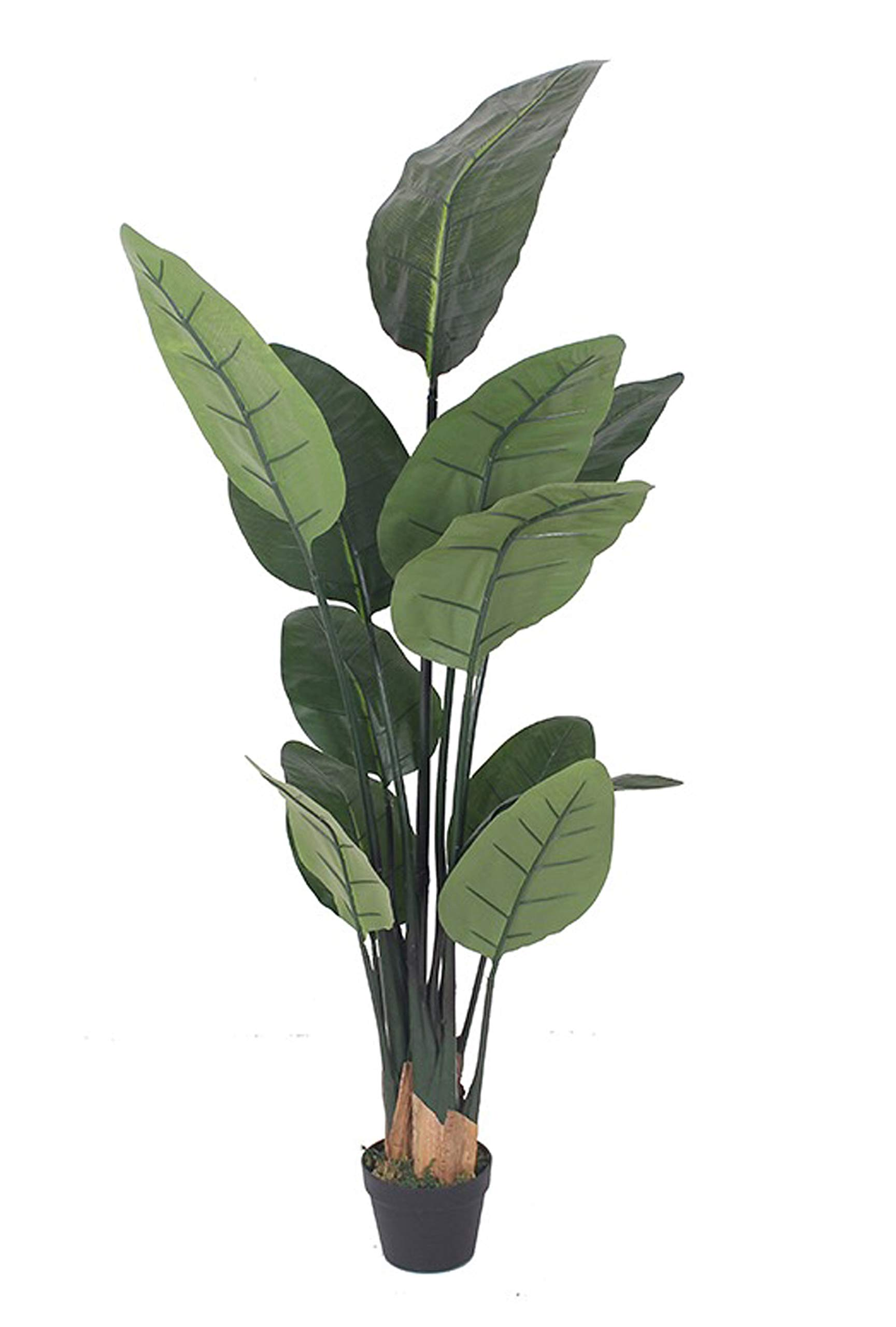 AMERIQUE 6 Feet Bird of Paradise Artificial Tree Silk Plant with Giant Leaves, UV Protection, Nursery Plastic Pot, Feel Real Technology, Super Quality, Green by AMERIQUE