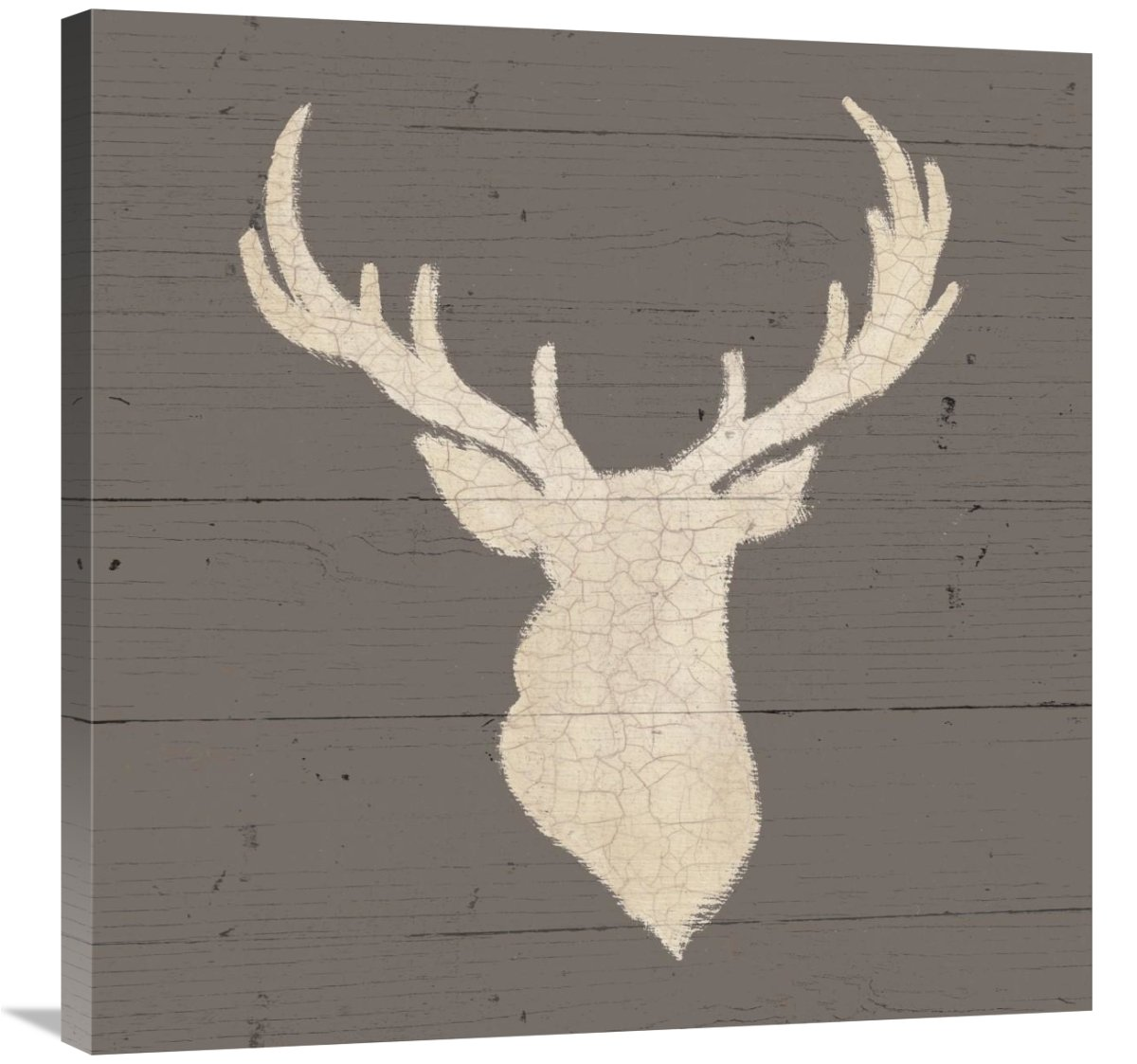Rustic Elegance I on Gray Wood Giclee Stretched Canvas Artwork 30 x 30 Global Gallery James Wiens