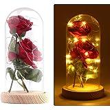 Rose Artificial Silk Sparkle Rose con pantalla de vidrio 20-LED Strip light Gran regalo para el día de San Valentín Día de la madre Cumpleaños de Navidad (Rojo)