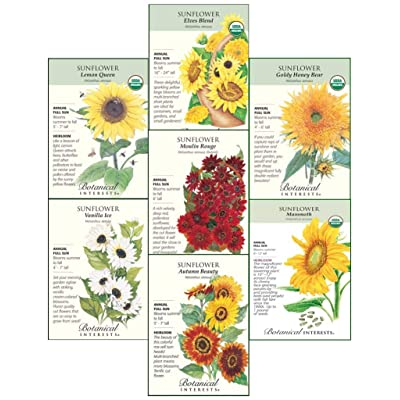 """Botanical Interests""""Sunflower Delight"""" Flower Seed Collection - 7 Packets with Gift Box : Garden & Outdoor"""