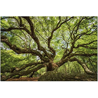 YIPINQUAN Jigsaw Puzzles 1000 Pieces for Adults and Kids Angel Oak Tree Wooden Puzzle Educational Toys Home Decor Wall Art: Toys & Games