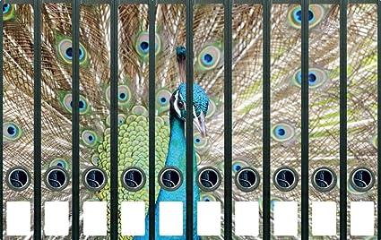 Lomo de archivadores Pegatinas decorativas pájaro – Azul Pavo Real con ojos azules – Tamaño 38