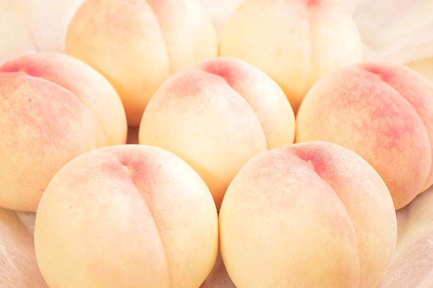 ちょっと待って魅惑する早めるSu-eat 長野県産 ネクタリン (訳あり 4キロ)