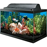 All Glass Aquarium AAG09009 Tank and Eco Hood Combo, 10-Gallon